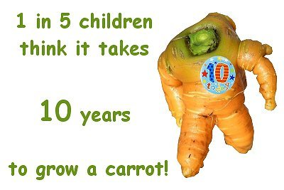 1 in 5 children believe it takes 10 years to grow a carrot!